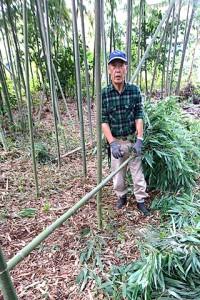 山廬振興会の関係者10名が集まって竹林整備の竹伐り