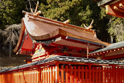 神々しく輝く御本殿の屋根、大きな3間社流造の社殿、棟に千木(ちぎ)鰹木(かつおぎ)がのる
