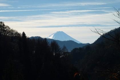 南に霊峰富士を仰ぐ