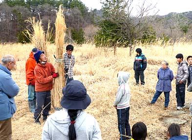 地元の若者がこども達に茅刈りの方法を教えました
