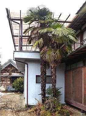 着工前南東面外観、改修前には玄関の上に錆びた物干し台があった