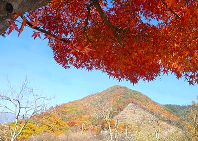OZO写真館「恵林寺山の紅葉」