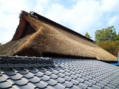 北側背面より、修理を終えた茅葺屋根と下屋の瓦葺屋根を見る