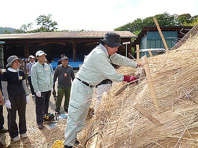 コテで茅を叩いて屋根の形を整えます。