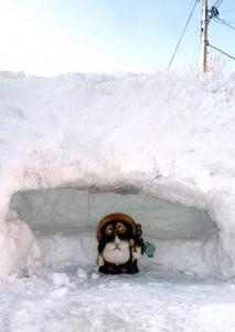 雪かきでできたカマクラに鎮座する信楽焼のタヌキ