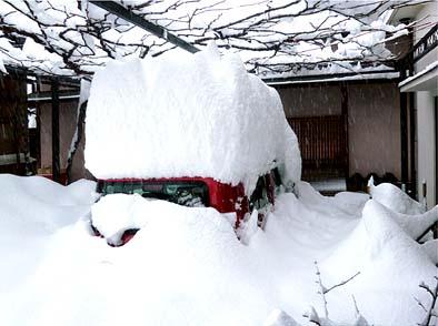 翌15日(土)の朝、妻の愛車・日産キューブは雪に埋もれていました、一昼夜降ってもまだ雪は降り続けています