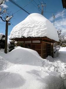15日(土)午後になって青空が見えました、 会社の茅葺き屋根の茶室「美壺庵」も御覧の通り雪の中