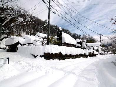 雪に埋もれた本社社屋、前面道路は旧青梅街道です