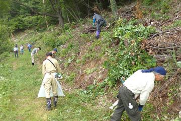 花かげの道およそ350mにわたって下草狩りを行いました