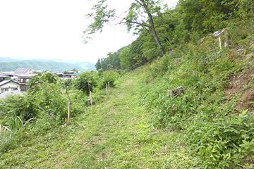 下草狩りを終えた花かげの道 快適な遊歩道になりました