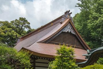 竣工 屋根の景観