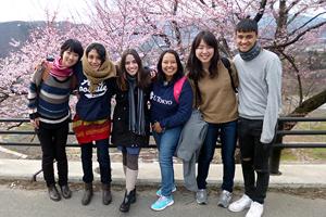ちょうど桜が満開。旅の良い思い出になるでしょう
