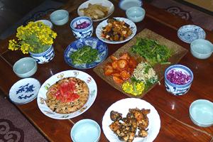ほうとうの他に豆腐のハンバーグ・里芋の甘酢・小松菜の辛し和え・ウドの甘味噌和え・紫キャベツのマリネ・ナスと鶏肉のトマト炒め・セリの薬膳和え